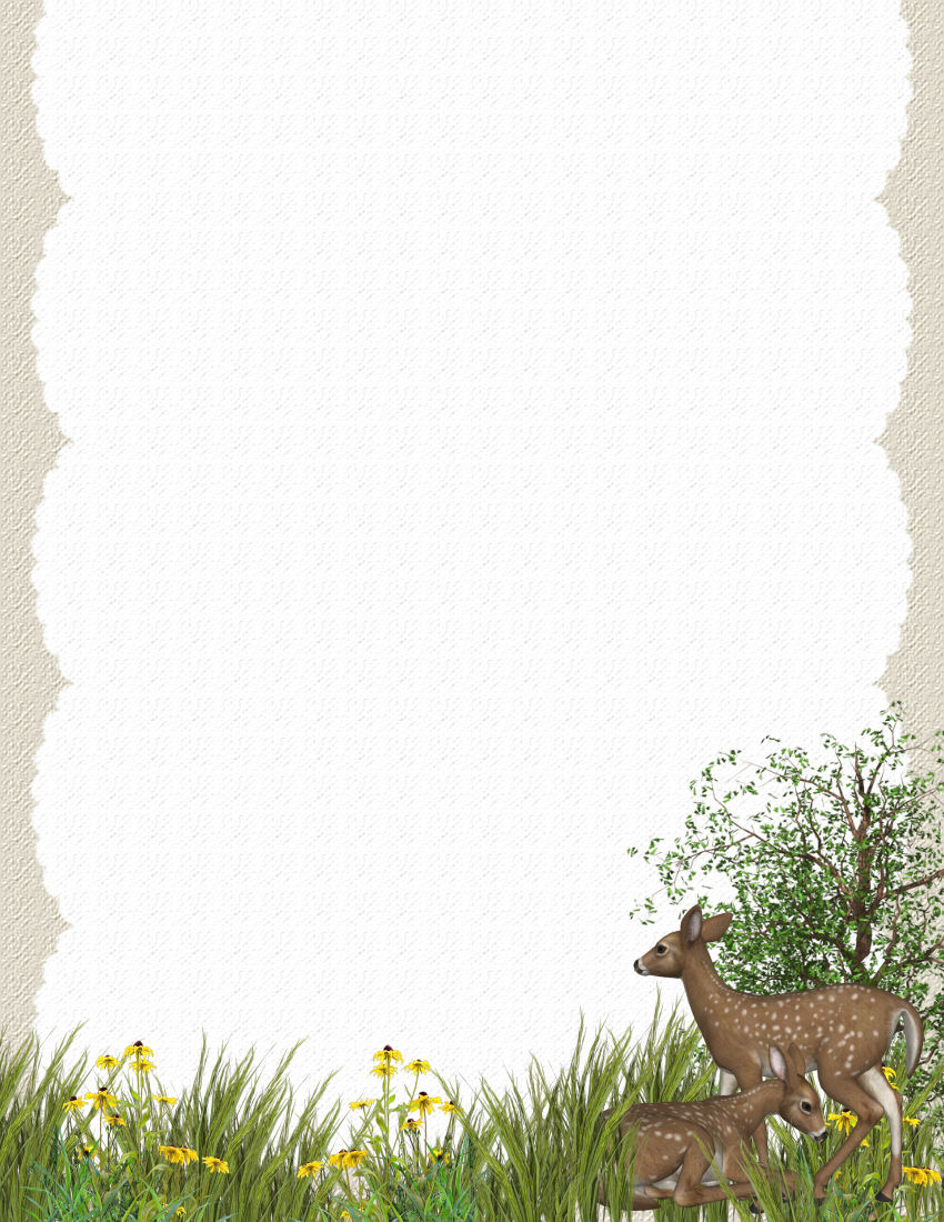 Animals and Critters 4 FREE-Stationery.com Template Downloads